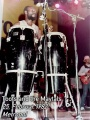 Toots Maytals Congas 1982 Metropol.jpg